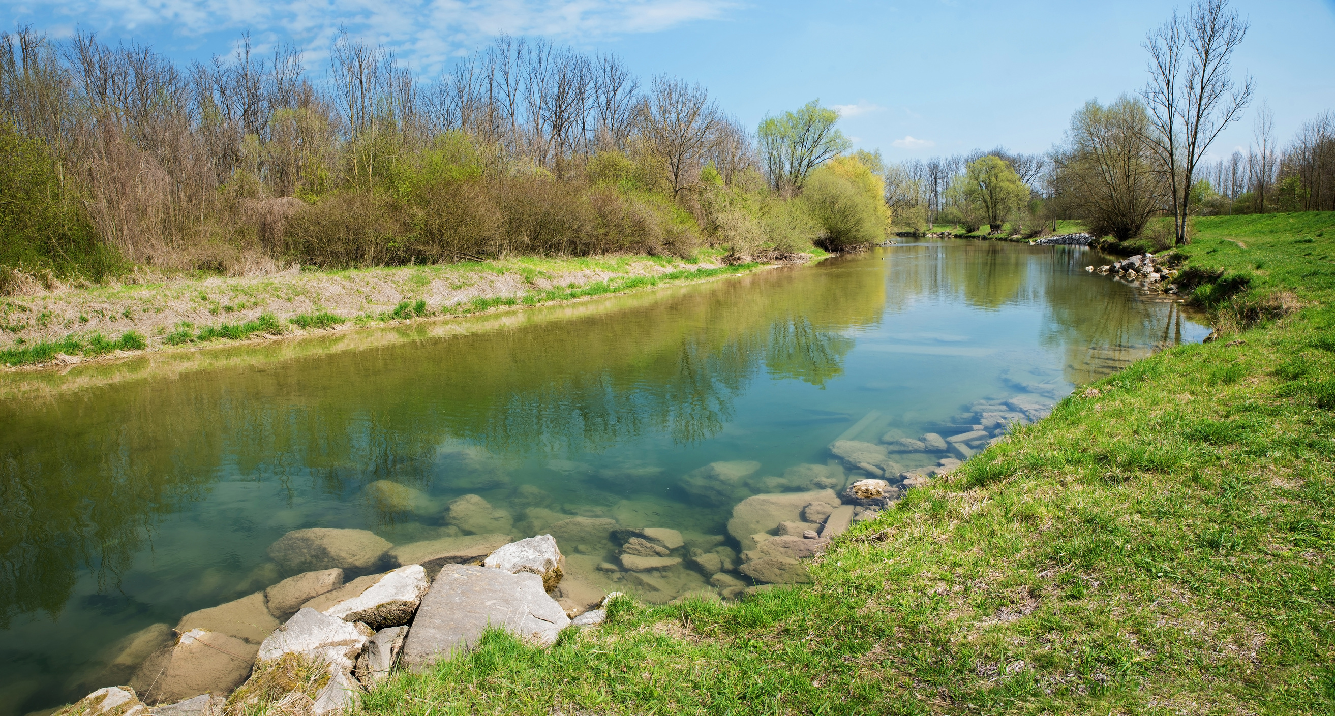 mangfall river bend, tranquil scenery at springtime
